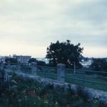Castellana-Grotte (Ba)-Aprile-1999